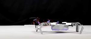 Ρομπότ 3D  που μοιάζουν με έντομα, σε λίγα μόλις λεπτά (vid)