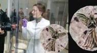 Αγαλματίδιο 200.000 ετών σε πέτρωμα στο φεγγάρι!